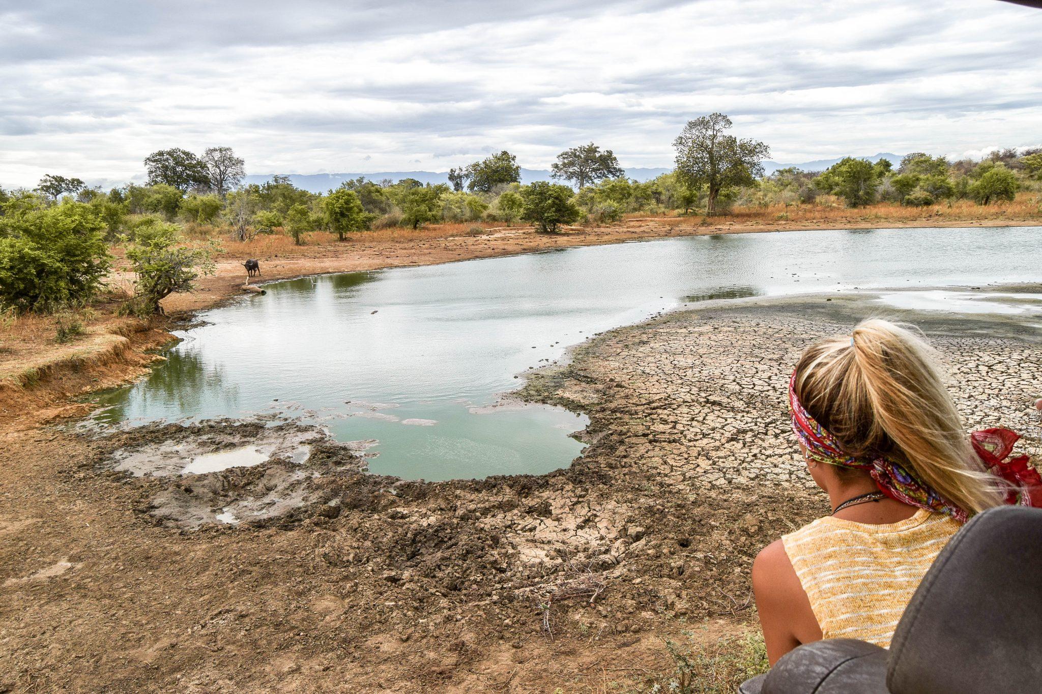 Wanderers & Warriors - Charlie & Lauren UK Travel Couple - Udawalawe Safari Crocodile Pool - Udawalawe National Park - The Best Safari In Sri Lanka