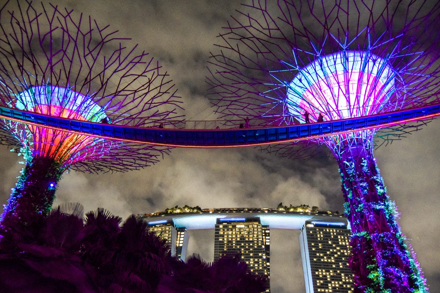 Gardens By The Bay Light Show , A Complete Guide