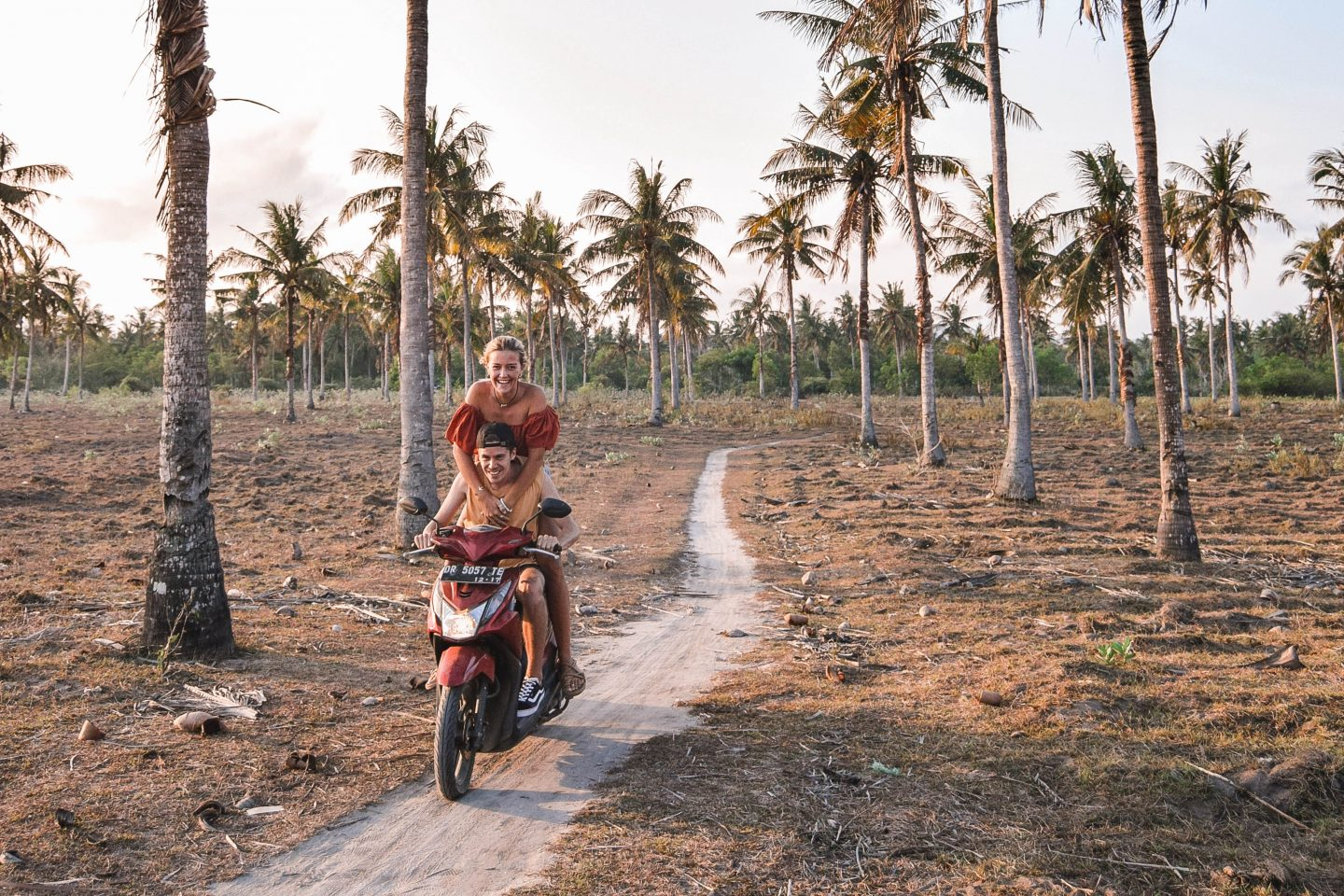 Palm Trees Things To Do In Lombok Itinerary