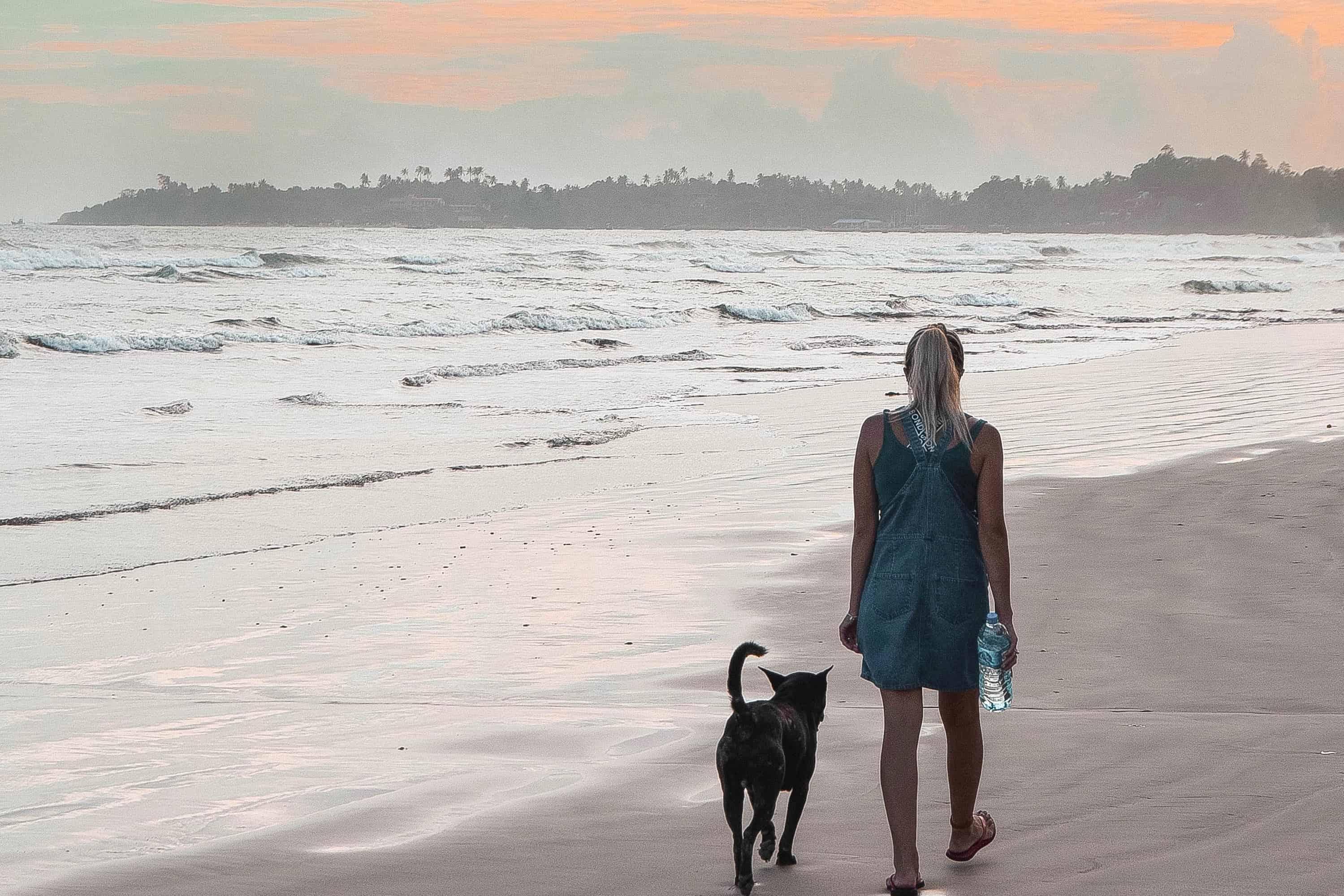 Wanderers & Warriors - Charlie & Lauren UK Travel Couple - Best Surf Spots In Sri Lanka Surf Spots - Weligama Beach