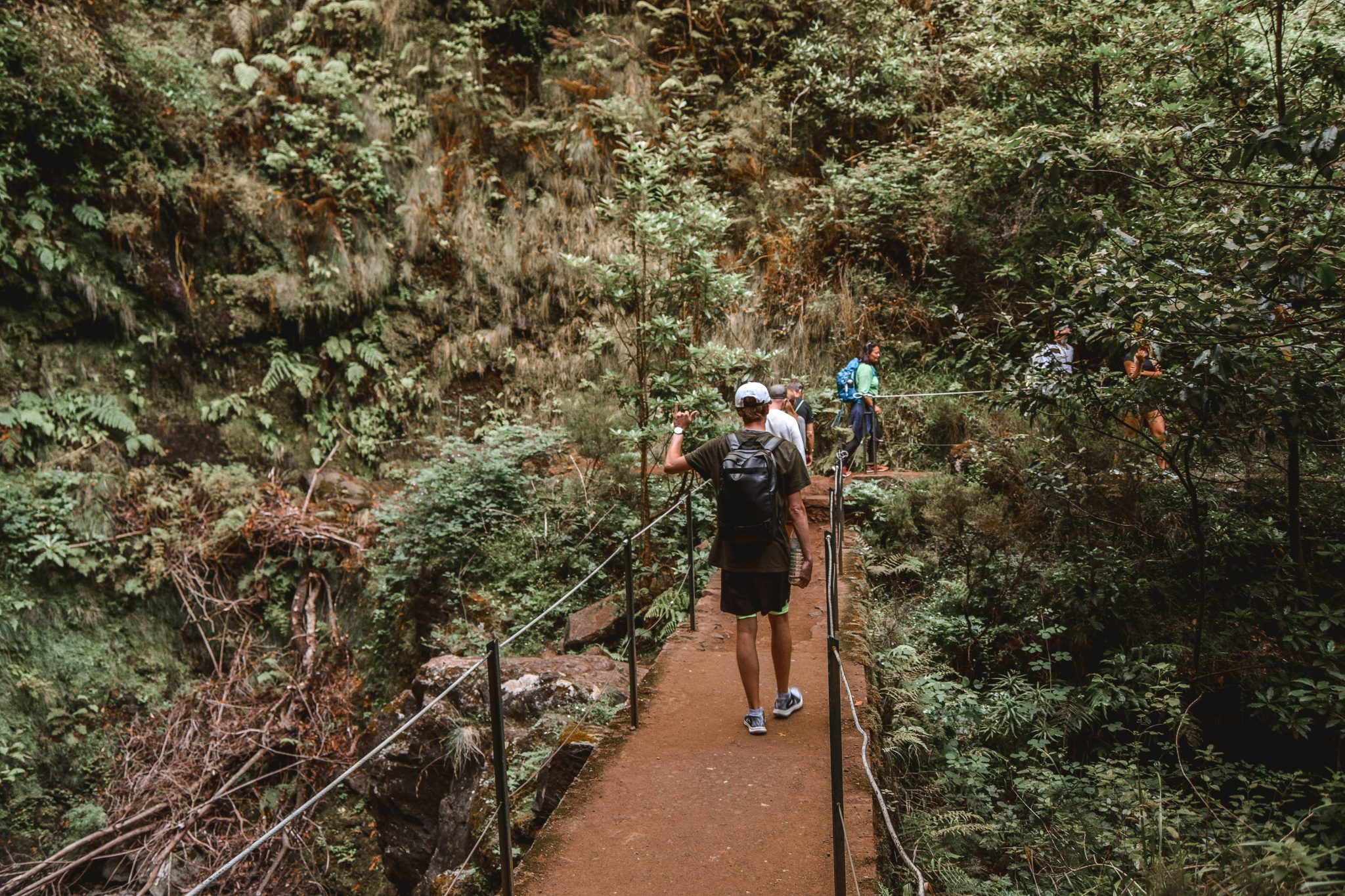 Wanderers & Warriors - Charlie & Lauren UK Travel Couple - Levada Caldeirao Verde Madeira Levadas Madeira Walks