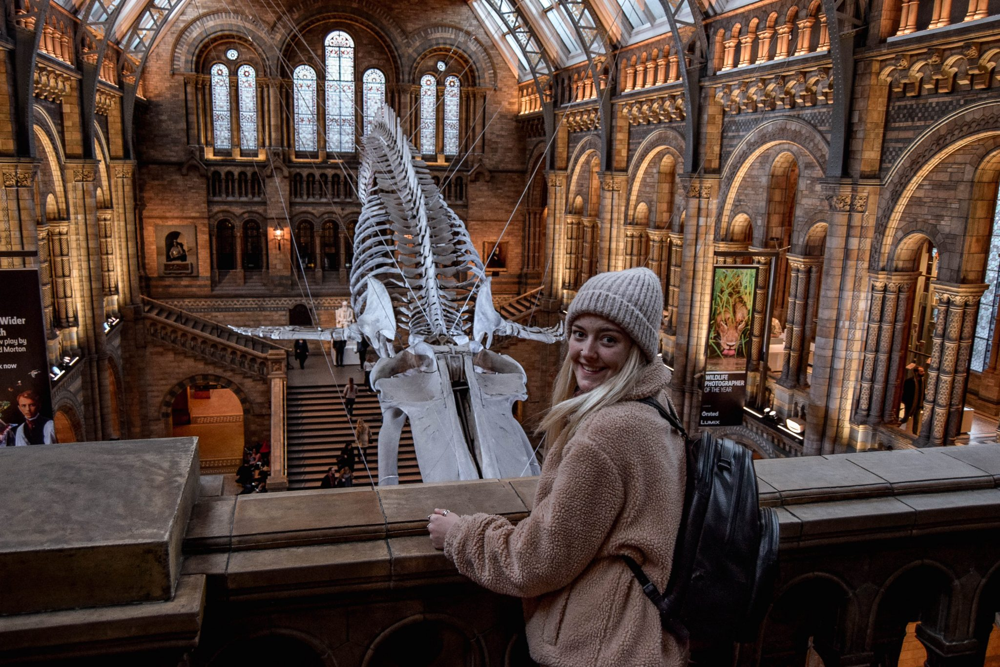 Ultimate London Bucket List - Natural History Museum Whale Skeleton