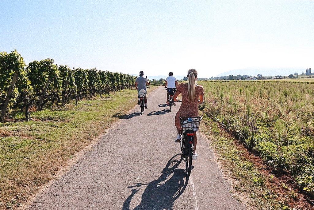 E-Bike Vineyards Tour Geneva 3 Days In Geneva 3 Day Geneva Itinerary